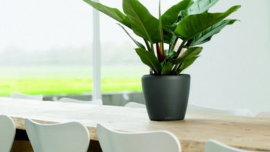 Photo of Кашпо с автополивом для комнатных растений