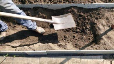 Photo of Как делать компост сразу в грядках